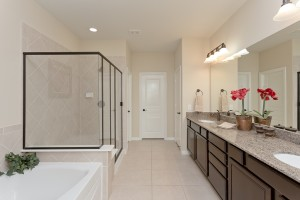 1523 Ralston Branch Way, Sugar Land TX 77479-Master Bath Separate Shower and bath
