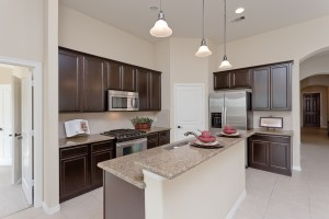 1523 Ralston Branch Way, Sugar Land TX 77479-kitchen with stainless steel appliances