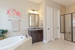 17215 Bland Mills Ln, Richmond Tx 77407-Master Bathroom couter tops